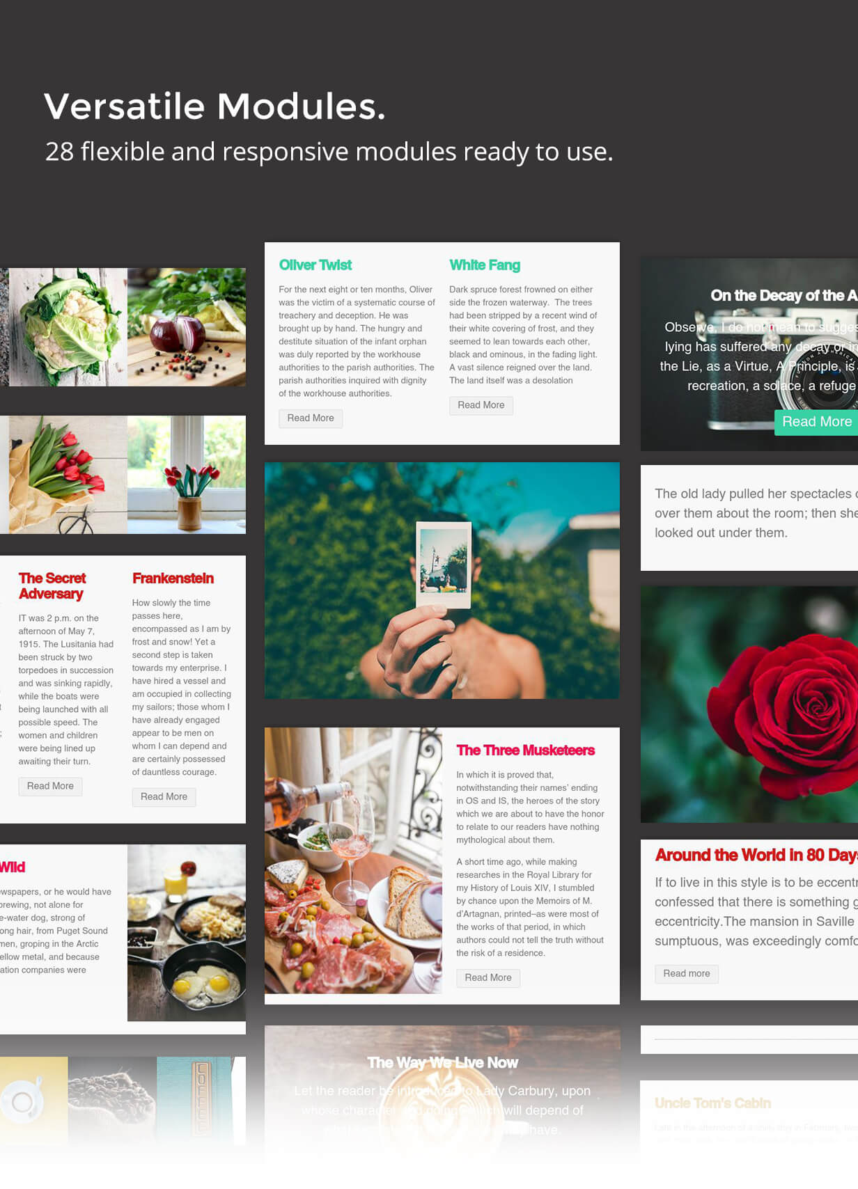 Business - Email Template for Mailster - 8