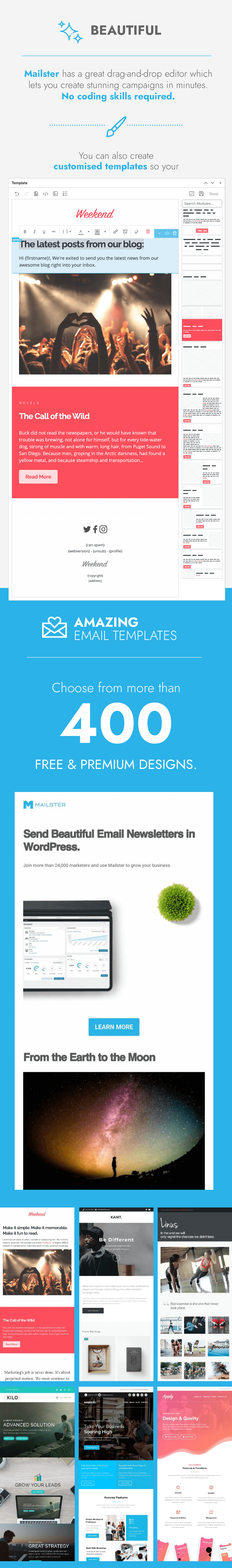 Mailster - Email Newsletter Plugin for WordPress - 2