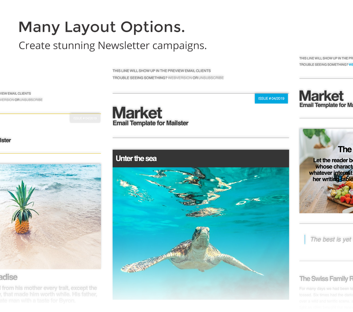Market - Email Template for Mailster - 7